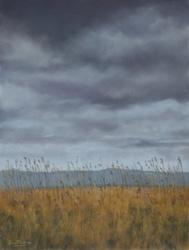 Marshland Grasses