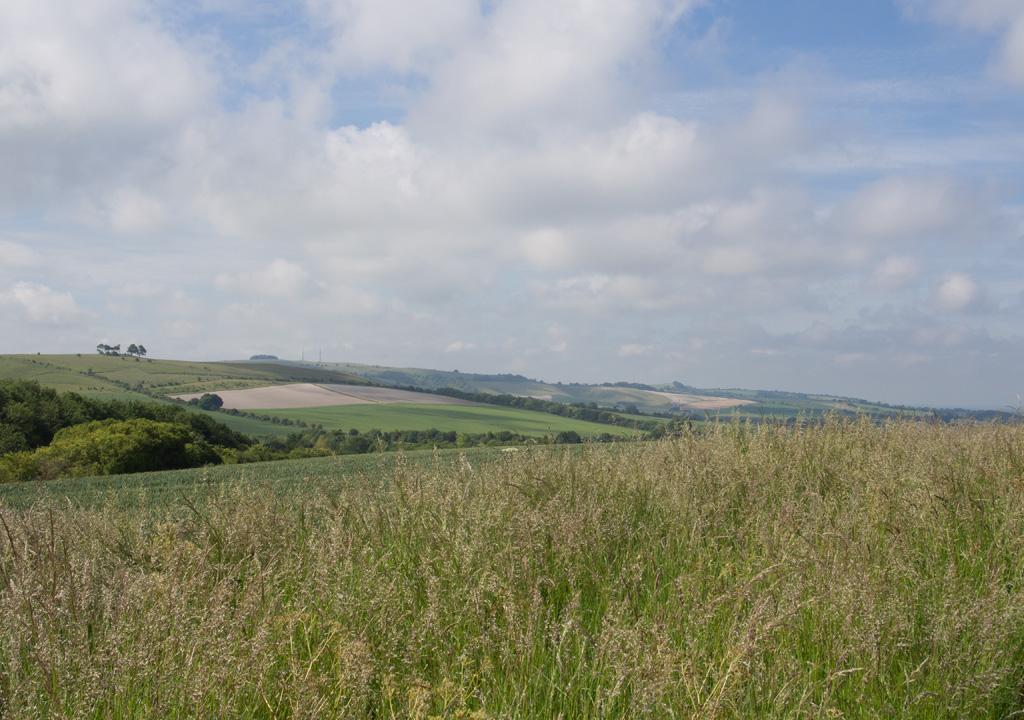 View towards Calstone