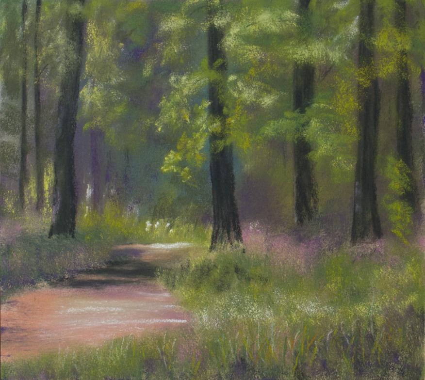 Nature Trail : An original pastel by landscape artist Sue Thomas