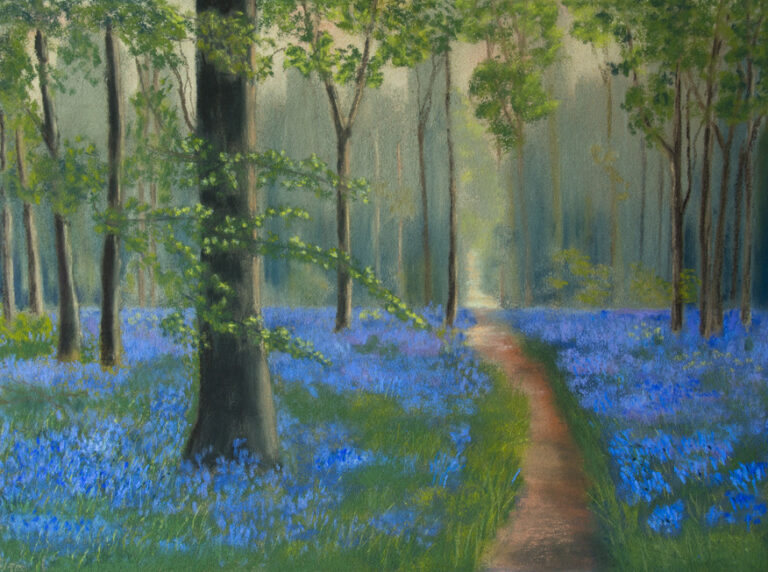 Bluebell Wood : An original pastel by Sue Thomas